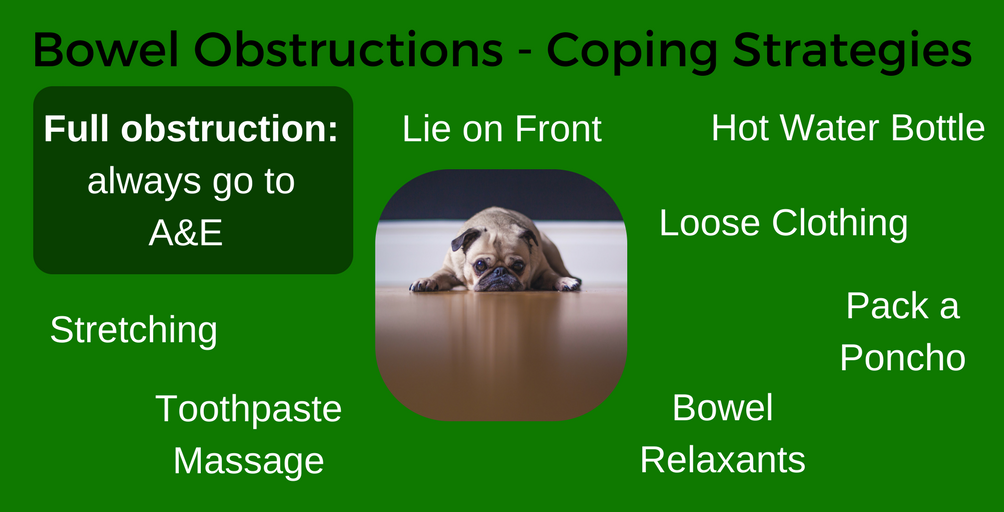 Bowel Obstruction Coping Strategies