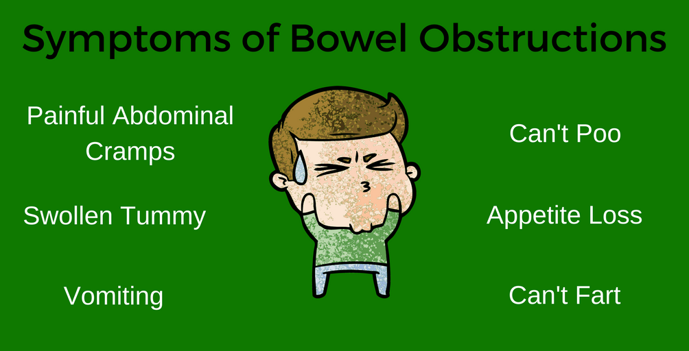 Bowel Obstructions | Mission Remission