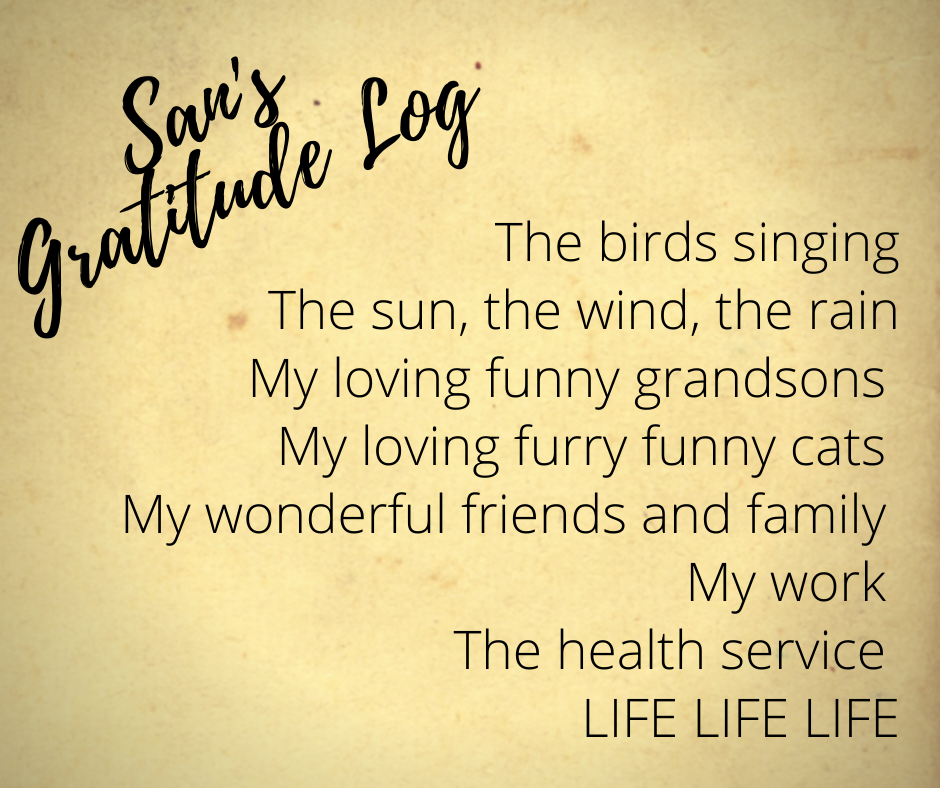 San's Gratitude daily Log The birds singing  The sun, the wind the rain My loving funny grandsons  My loving furry funny cats  My wonderful friends and family  My work  The health service  LIFE LIFE LIFE